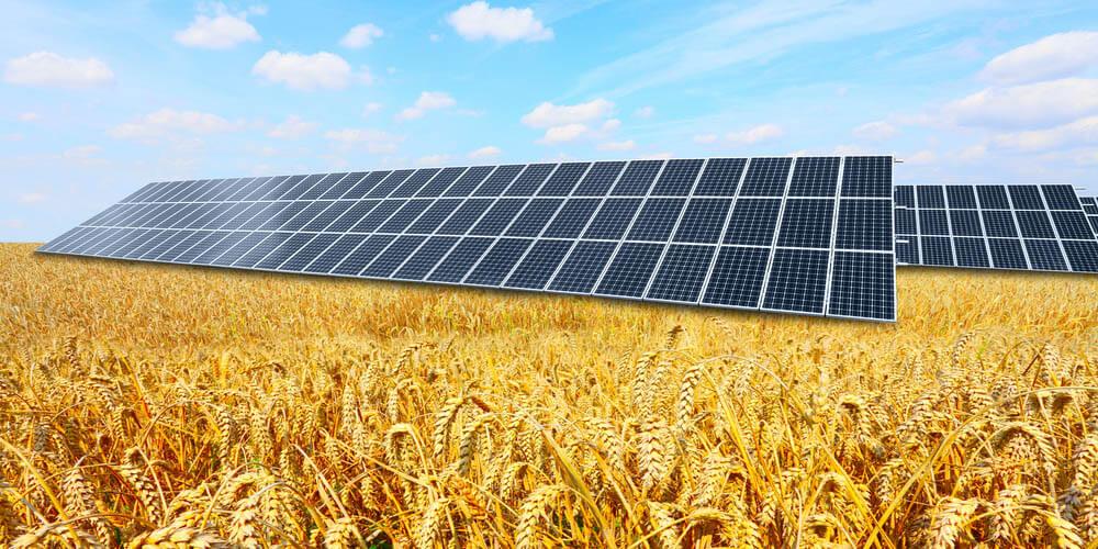 Les éléments indispensables pour la réussite de son exploitation agricole