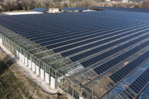 Serre photovoltaïque