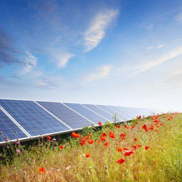 installation-panneau-solaire-champ-inutilise