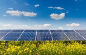 mise-en-place-panneau-photovoltaique-champs-agricole