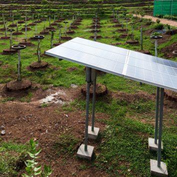 Agriculture-et-energie-solaire-un-duo-gagnant