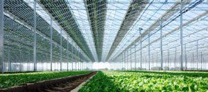 Concentrez vos investissements sur votre production agricole
