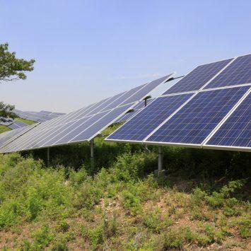 Installation-de-panneaux-solaires-sur-des-terrains-pollués