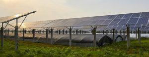 Qu'est ce qu'une serre photovoltaïque