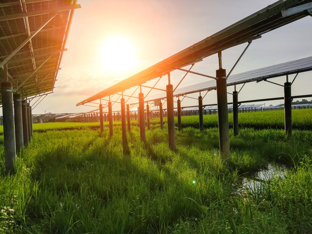 Rendement de la production de l'estricité photovoltaïque