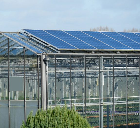 Serres photovoltaïques pour les agriculteurs