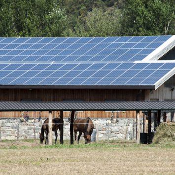 centre-équestre-solaire