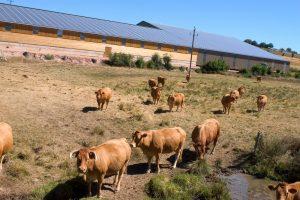panneaux solaires sur son hangar agricole