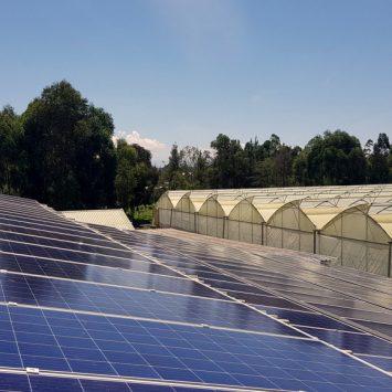 realisation-serre-photovoltaique