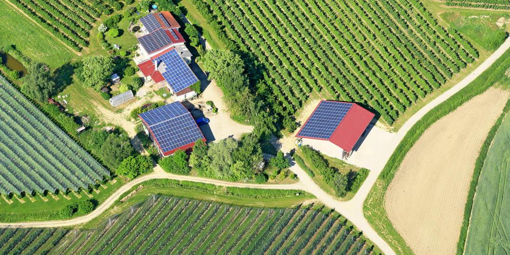 Les solutions photovoltaïques pour agriculteurs : comment répondre à chaque besoin tout en adaptant le projet de centrale solaire ?