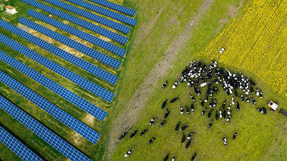 Les bâtiments agricoles photovoltaïques