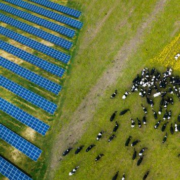 Protéger-terres-arables-agrivoltaïsme