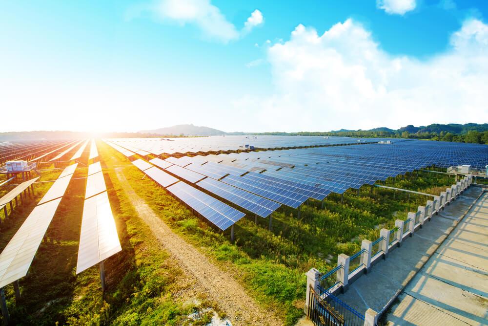 installation-panneau-solaire-au-sol-en-milieu- agricole