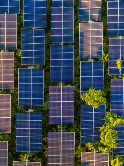 tout-sur-ferme- photovoltaïque
