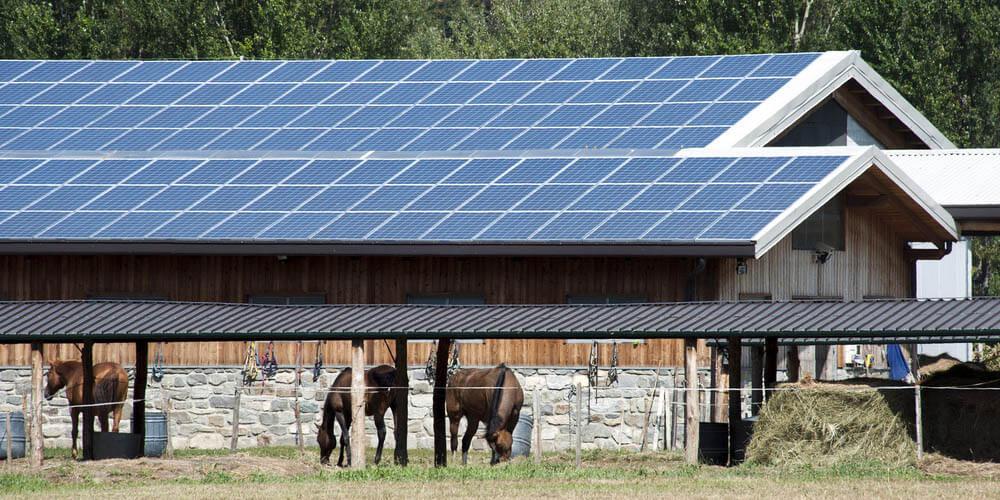 Bâtiment-équestre-comment-fonctionne-manège-photovoltaïque