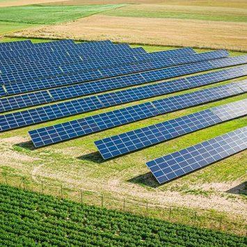 Des panneau solaire sur un terrain agricole