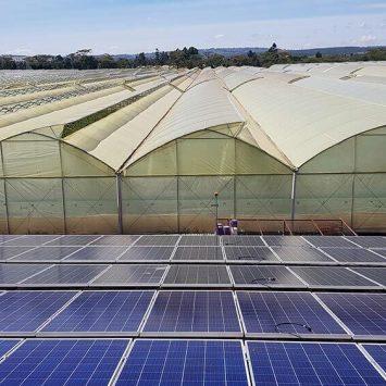 Panneau solaire sur un terrain agricole