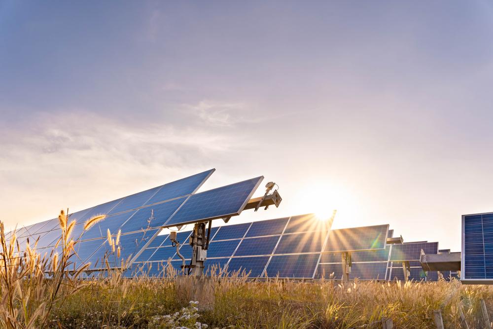 Tout savoir sur le champ de panneau solaire