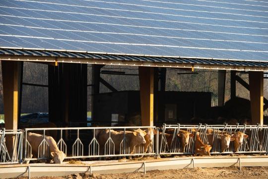Les étapes d'une construction de ferme photovoltaïque