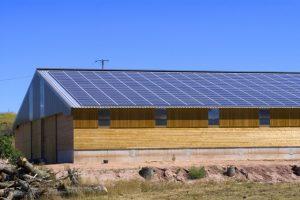 plaques photovoltaïques